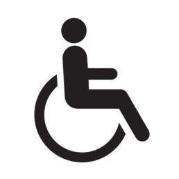 LAWRS Latin American Women's Rights Service Disability Logo